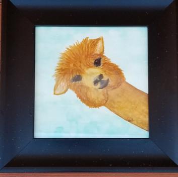 Cute Alpaca original watercolor painting