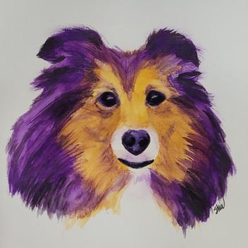 Sheltie original watercolor painting