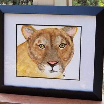 Mountain lion original watercolor painting