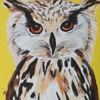 Owl original acrylic painting