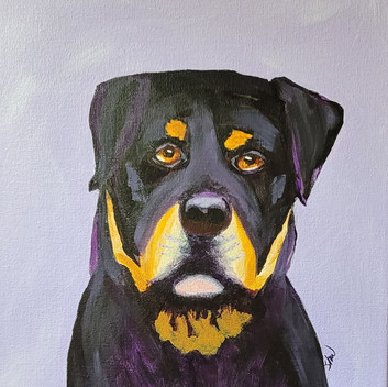 Rottweiller acrylic painting