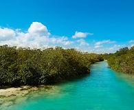 Sian Ka'an Biosphere Reserve Mexico.jpg