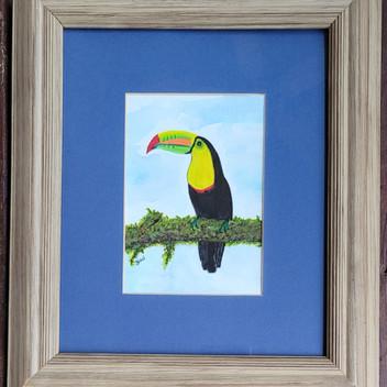 Toucan original watercolor painting
