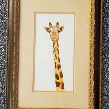 Framed Watercolor giraffe