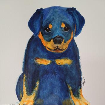 Super Rottweiler pup original watercolor