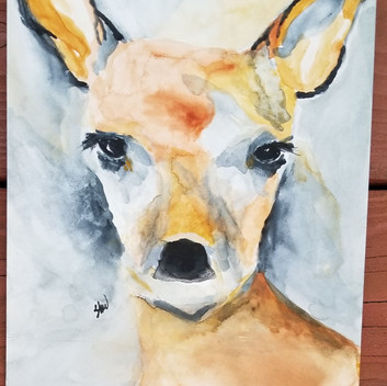 Young deer original watercolor painting