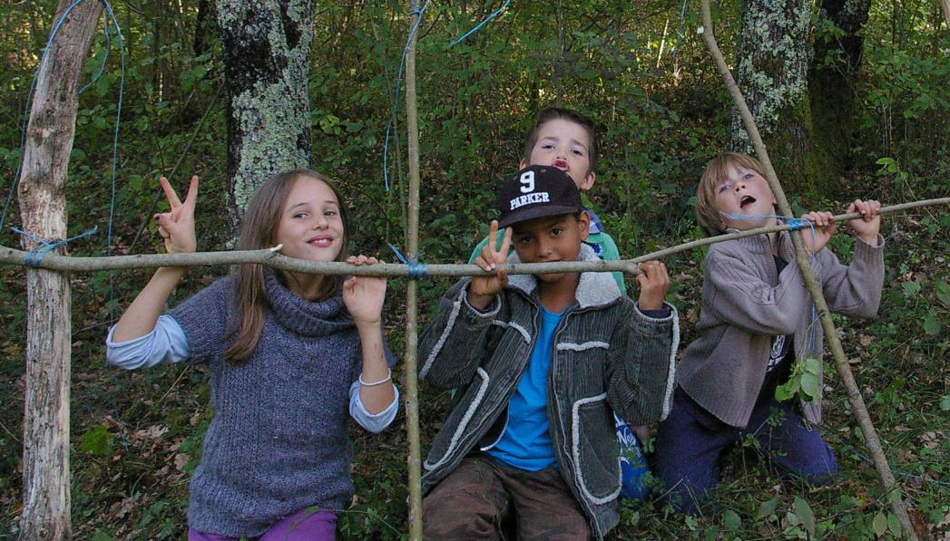 bricolage dans les bois