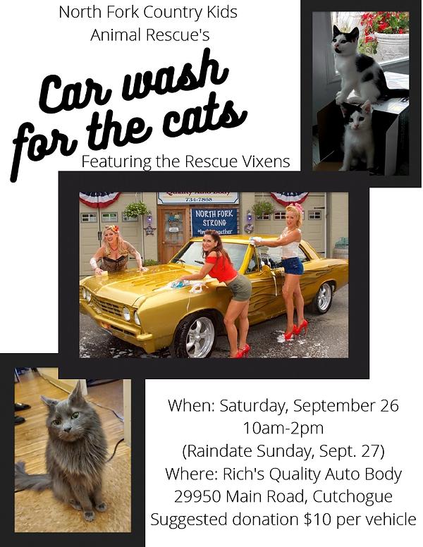 Car Wash Flyer1024_1.png