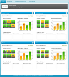 SalesForce Data Example