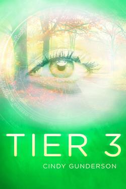 Tier 3E