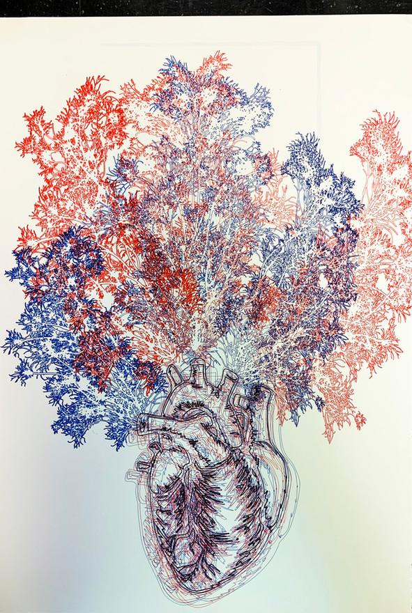 Micro & Macro LINE & TONE Drawing - Julianna Dougherty