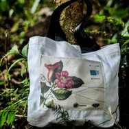 Ecobag Slow Market Beauty.jpg