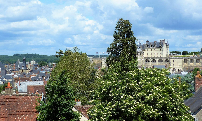 vue_sur_chateau_amboise_et_ville_depuis_chambre_gite_belvedere_edited