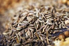 fennel-seeds-closeup.jpg