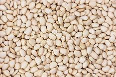 white-kidney-beans-dry-legumes-texture.j