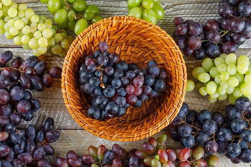 bulk grape juice concentrate supplier.jp