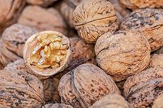 nuts-4062624_640.jpg