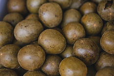 dried-luo-han-guo-fruite-seed-natural-ch