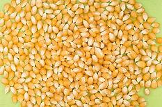 corn-5213400_640.jpg