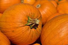 pumpkin-3636243_640.jpg