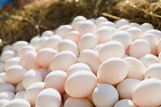 close-up-fresh-duck-eggs-hay.jpg