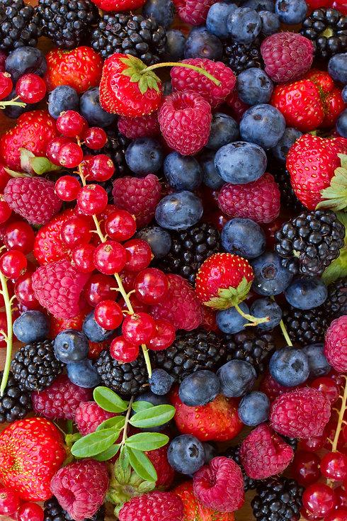 bulk berry blend bulk berry ingredients.