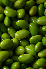 close-up-edamame-beans.jpg