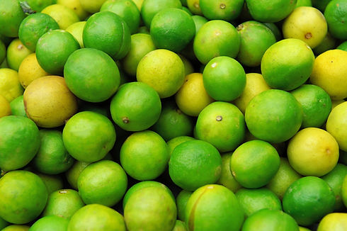 bulk limes supplier foodguys.jpg