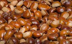 chestnuts-3727959_640.jpg