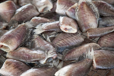 dried-fish.jpg