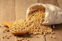 soybean-sauce-soybean-wooden-floor-soy-s