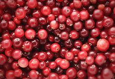 cranberries-horizontal-background.jpg