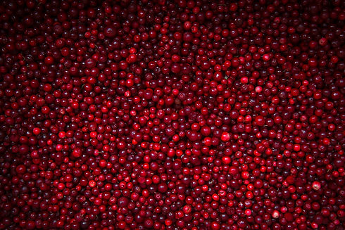 ripe-cranberries-background-with-vignett