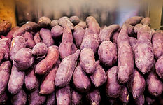 close-up-fresh-purple-sweet-potatoes-fro