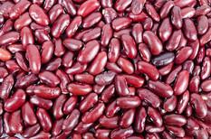 beans-316592_640.jpg