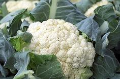 cauliflower-1465732_640.jpg