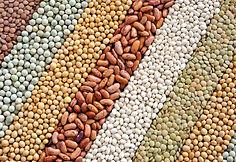 bulk beans supplier foodguys.jpg