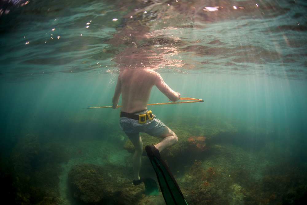 Hunting for moments of pause and presence | A patient floats in shallow water with a pole spear