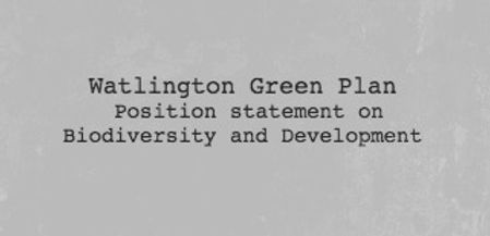 Watlington Green Plan