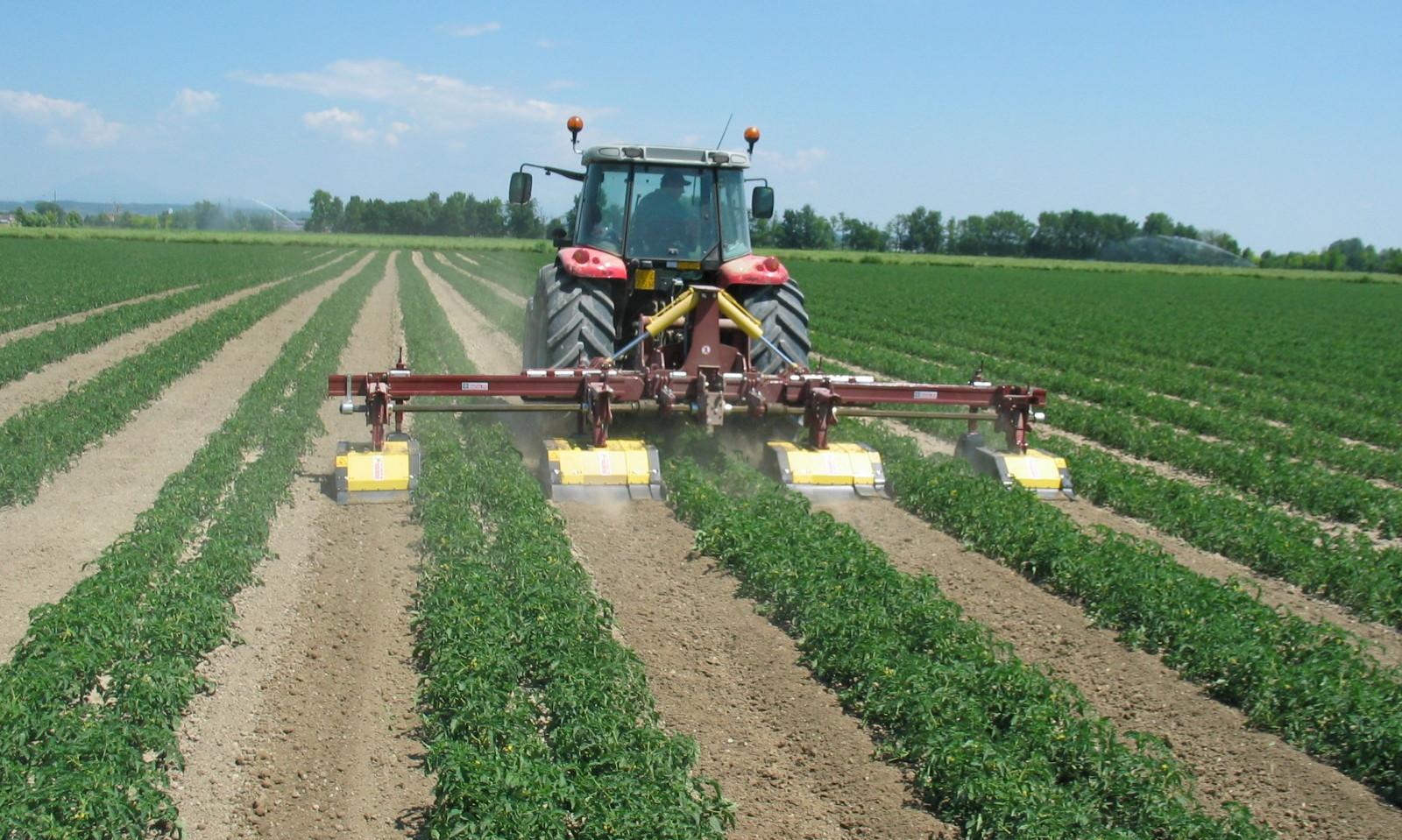 Multirototiller Weed Control Equipment
