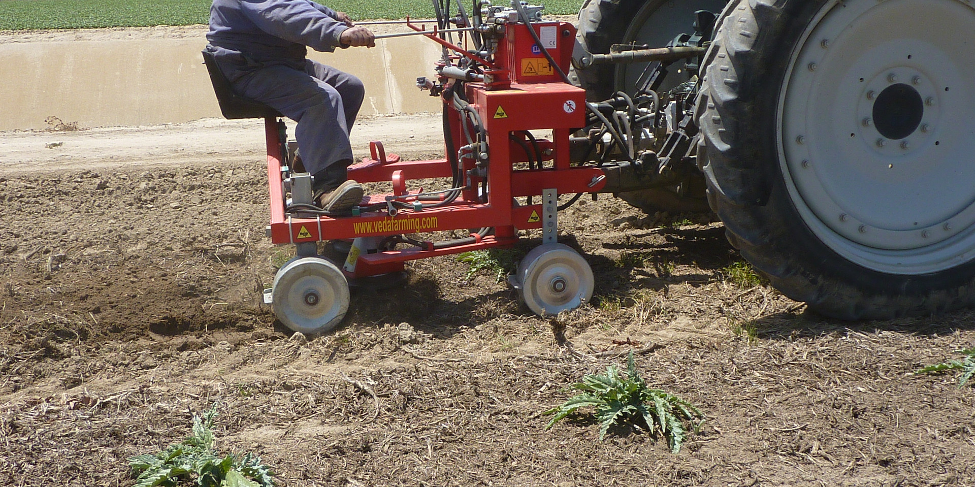 Mechanical Weeder Agricultural