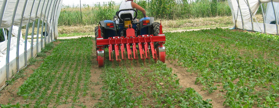 Inter Row Cultivator Weed Control Farming