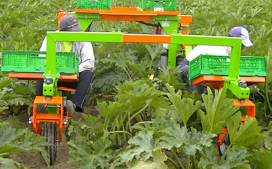 Multis Misellaneus Farming