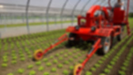 Agricultural Service, Farm Equipment, Farm Equipment For Sale, Farming Equipment, Veda Farming, Weed Control