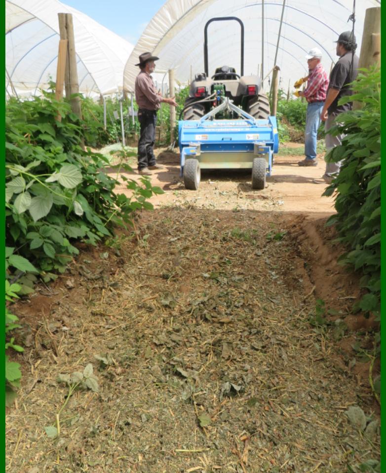 Shredder TRP Agricultural