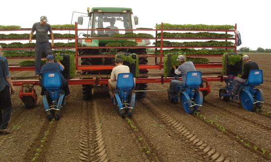 FMAX Transplanter Farming