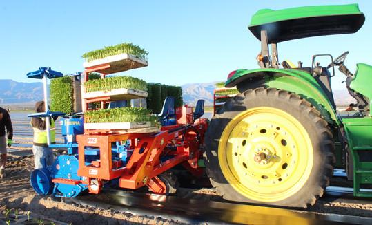 FPA Transplanter Agricultural