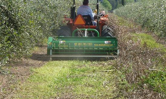 Shredder BNU Farming