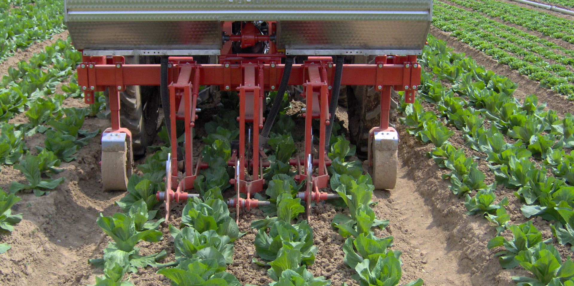 Inter Row Cultivator Weed Control Equipment