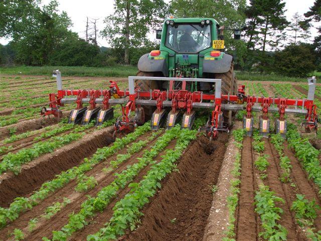 Multirototiller Weed Control Farming